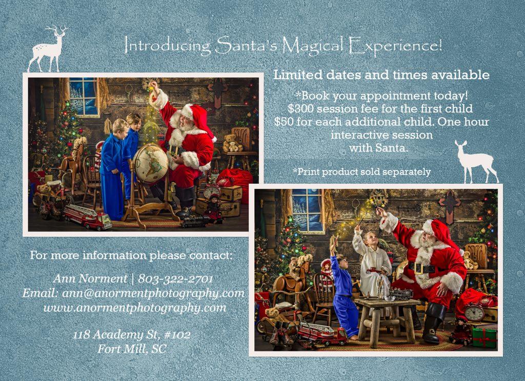 Santa's Magical Gift Pricing