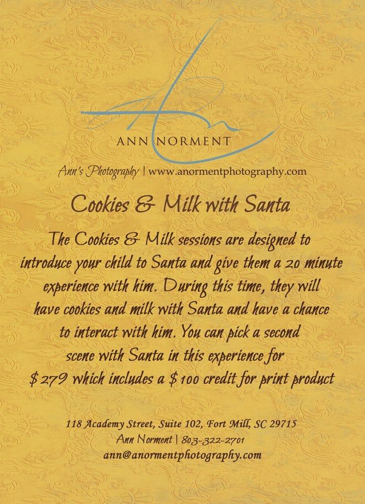 Santa's Cookies and Milk Session