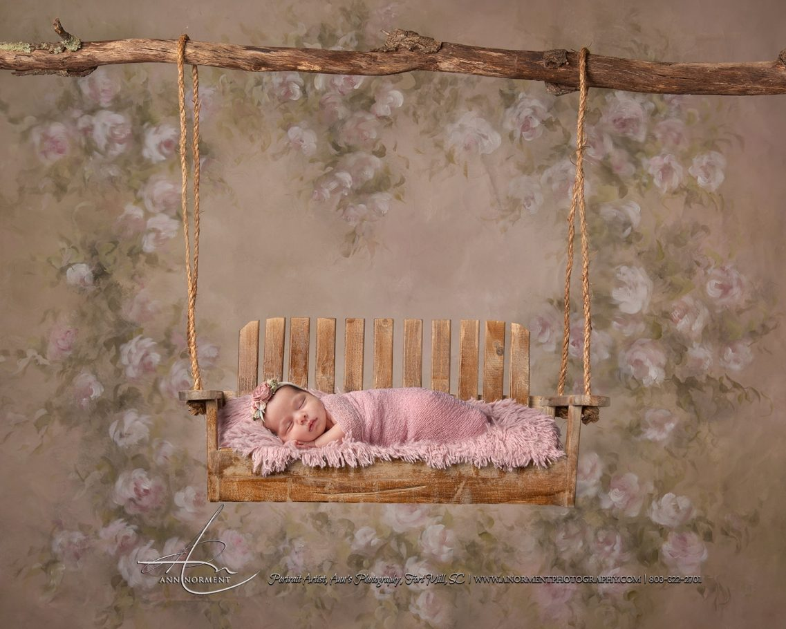 Newborn Portraits, Charlotte NC, Fort Mill SC, Waxhaw NC
