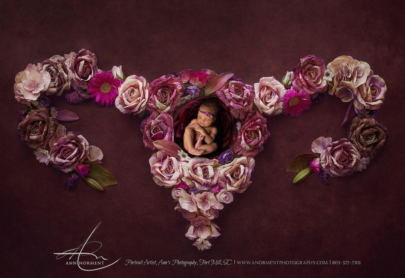 Newborn Photographer, Newborn Portraits, Charlotte NC, Fort Mill SC