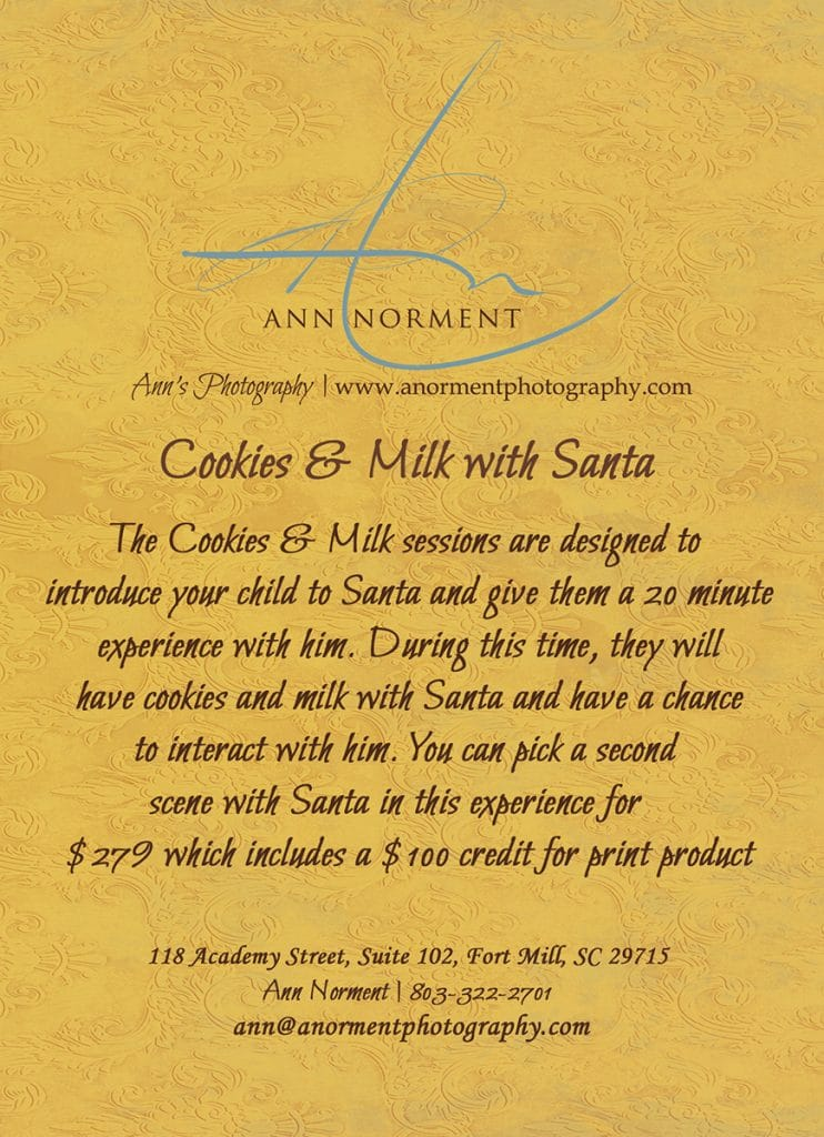 Santa's Cookies and Milk Session